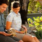 Halls Gap Zoo is on the market, animals included
