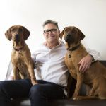 Why bringing a dog to work might be good for business
