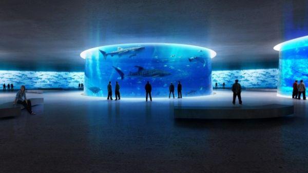 Italian design team create an aquarium for the future
