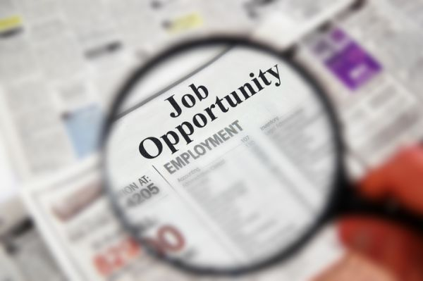 Job ads jump to four-year high, but price pressures stay soft