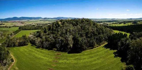 bf54b4026e4 Queensland farm was Australia's hottest property – 40,000 years ago