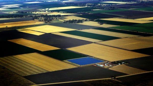 Rural property sales surge to $17.5 billion: Landmark Harcourts