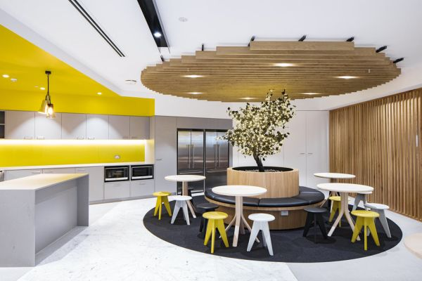 New office designs show the value of being social