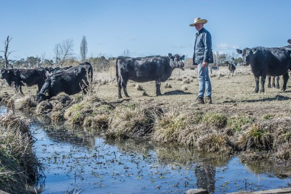 Australian farmers driving up profits through regenerative agriculture