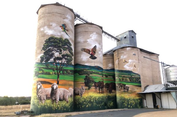 Grenfell is the latest rural town to join the Silo Art Trail with mural by Melbourne artist Heesco