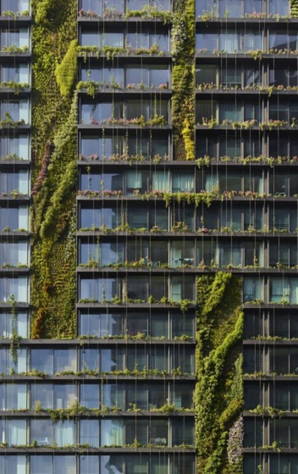The world's largest vertical gardens designed by Patrick Blanc. Photo: Simon Wood Photography