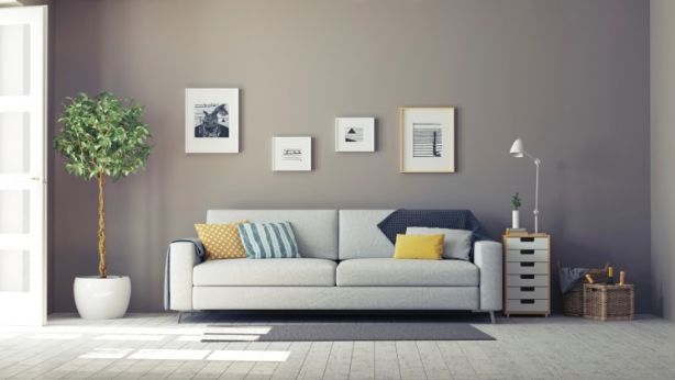 Great furniture, plants, and well-placed artwork will give any rental property a lift. Photo: iStock