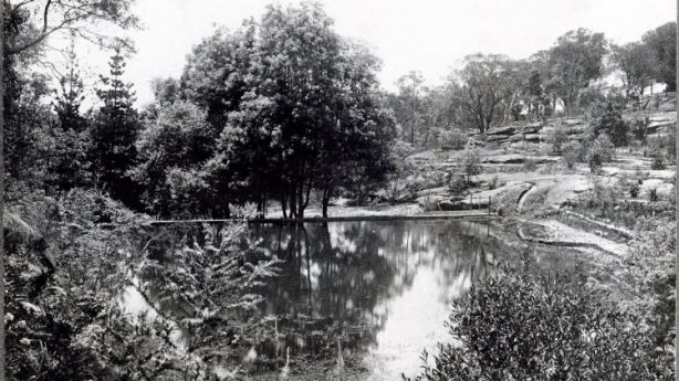 The ornamental lake and terraced gardens before being overgrown. Photo: domain.com.au