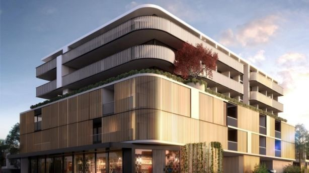 Dynamic facade: This artist's impression of the Maple development shows the Japanese maple tree that will stand above the corner of Power Street and Burwood Road, Hawthorn. Photo: Supplied