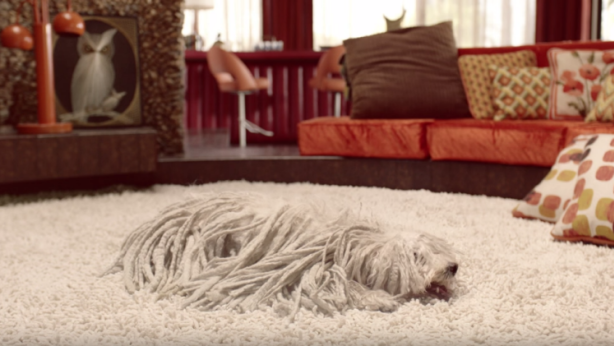 At 127 Willow Lane, the arrival of a shagpile carpet in the 1970s failed to impress. Photo: Nest/YouTube