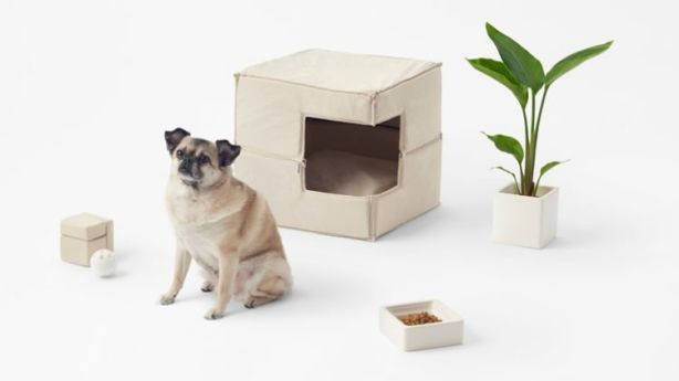 Minimalist Furniture For Your Minimalist Pet