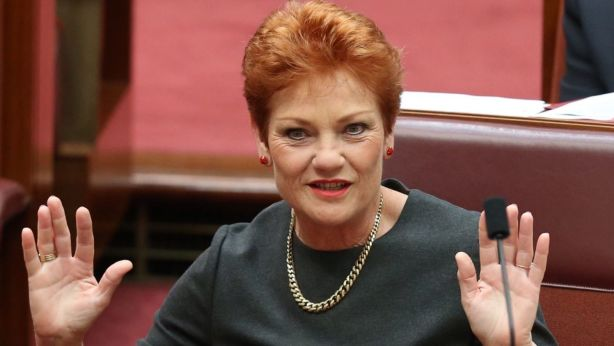 A spokesperson for One Nation leader Pauline Hanson said it was a matter for the lawyers. Photo: Andrew Meares
