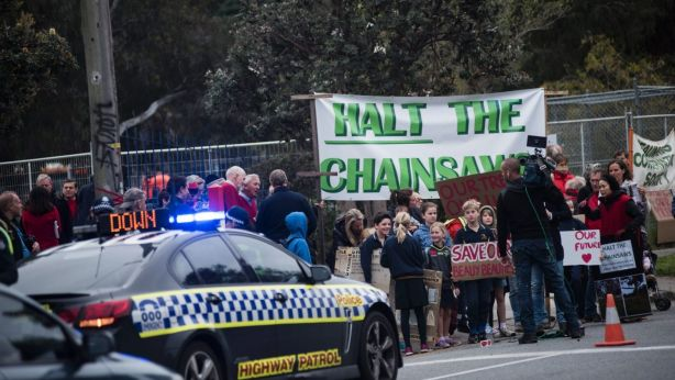 Protesters outside Beaumaris Secondary College last year were angered at plans to lop trees. Photo: Josh Robenstone