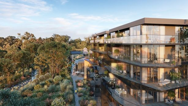 The Ringwood apartments have views over the treetops. Photo: Marshall White Projects