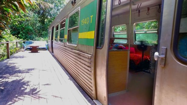 The 1979 Melbourne train carriage that Jeanette Hergenhan turned into a rainforest retreat. Photo: Marc Tewksbury