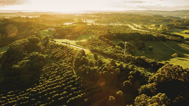 Byron Bay Hinterland: Strong tourism numbers continue to drive growth in the accommodation and retail service businesses in the region. Photo: James Horan / Destination NSW