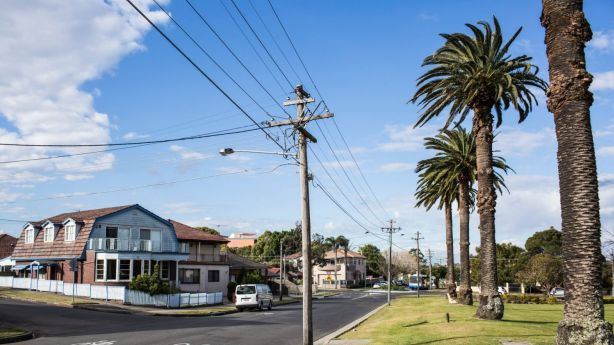 The suburb's streets are lined with freestanding homes in Federation, California bungalow and art deco styles. Photo: Dominic Lorrimer