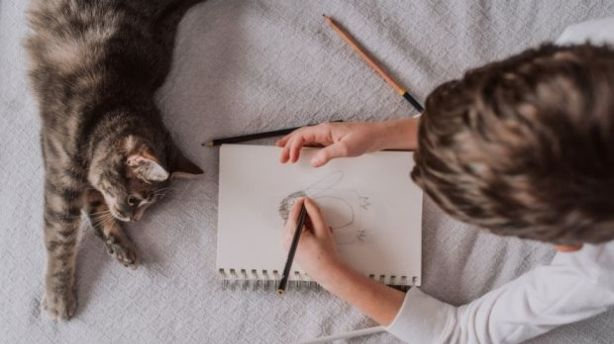 Keeping up familiar routines with your pets is important when moving house. Photo: Stocksy