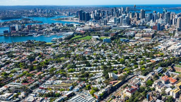 Sydney's urban tree canopy of Sydney will be increased from approximately 16 per cent to 40 per cent under the policy. Photo: Mark Merton