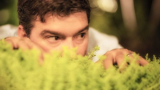Plants and screens can help block out nosy neighbours. Photo: Instants