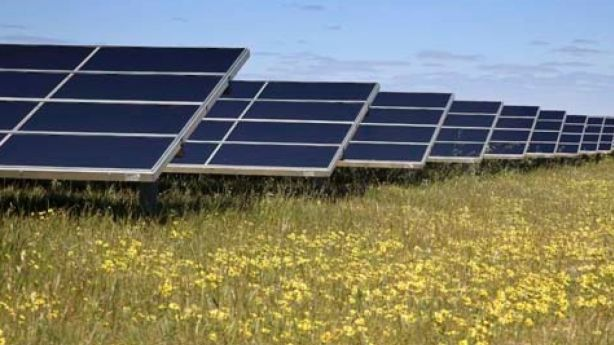 Solar panels are likely to be Australia's main power source in the future.