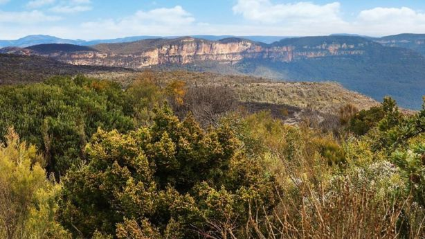 Scenic Wentworth Falls has a median price of $715,000, which sits above the overall house median of $680,250 in the Blue Mountains region. Photo: Supplied