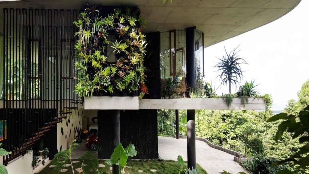 Raw concrete is juxtaposed with green walls and other foliage built into the structure of the home.