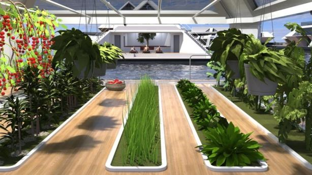 Fresh food could would theoretically be grown on the city. Photo: Lazzarini Design