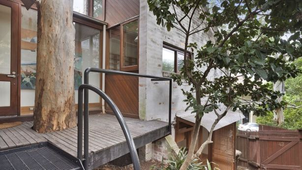 This Balmain property had an unusual layout and a prominent tree as a feature of the design. Photo: Supplied