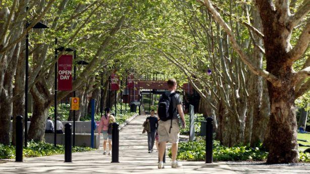 The area is close to many facilities, including Macquarie University. Photo: Michel O'Sullivan