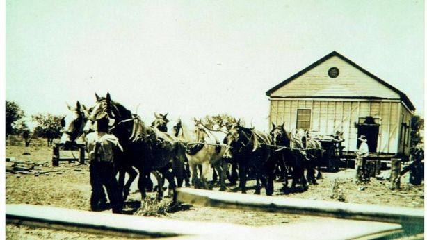 Before there were trucks, Queenslander houses were moved by horse. Photo: Karan Hibbs, Yuleba Development Group