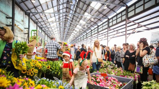 Carriageworks in Darlington plays host to a plethora of cultural events, including fashion shows, arts festivals, and markets. Photo: Anna Kucera