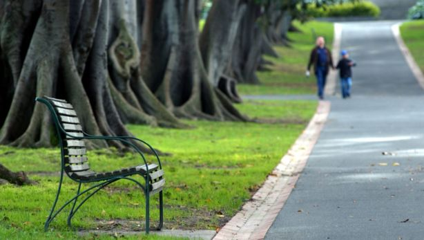 Experts say people are more likely to walk if there are trees and green space. Photo: Erin Jonasson