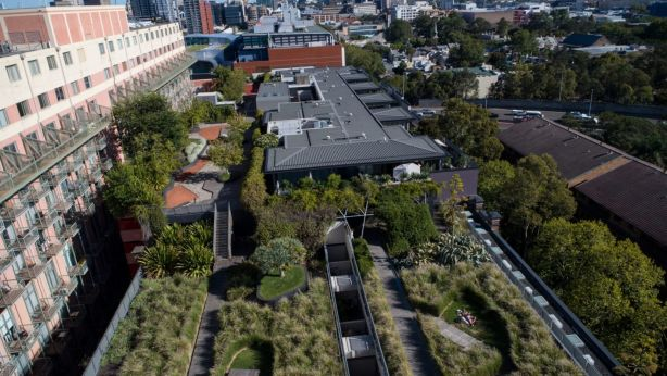 The City of Sydney has a green roofs and walls policy, as illustrated by M Central in Pyrmont. Photo: Wolter Peeters