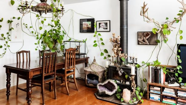 Julia's living area, featuring an Antique Dutch light gifted by her parents. Photo: Amelia Stanwix