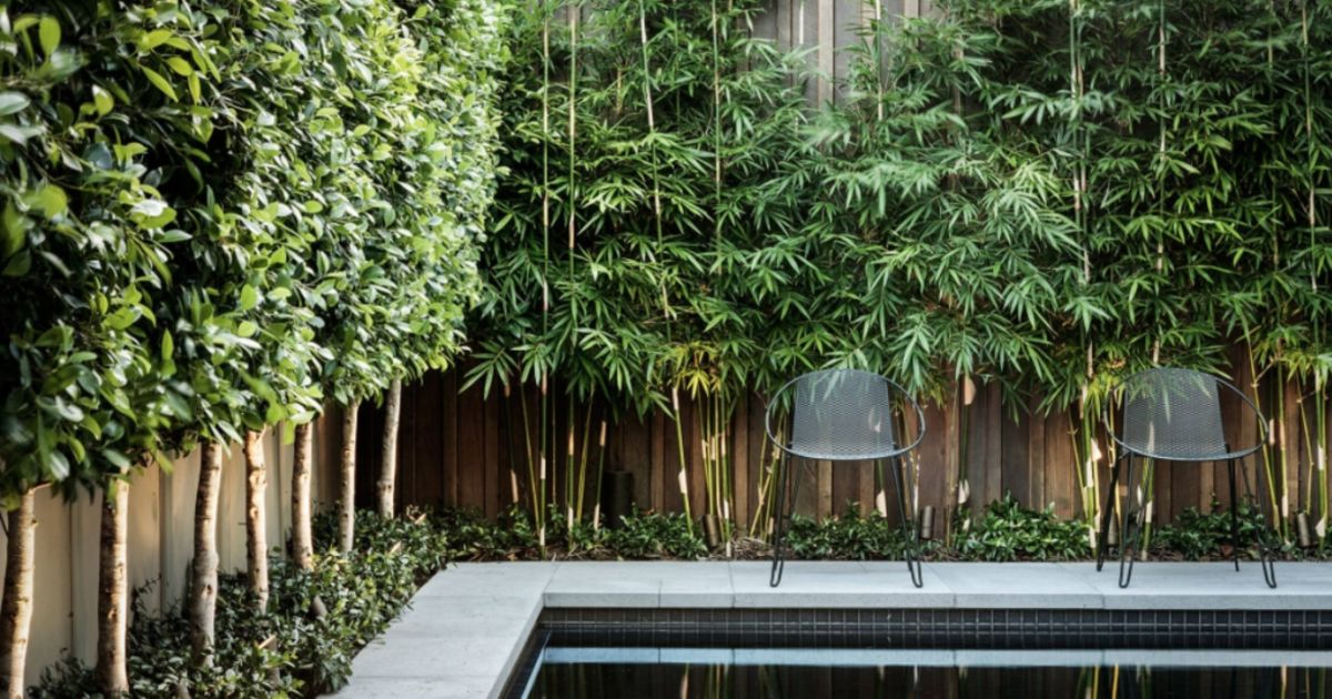 Confessions Of A Landscape Architect Three Things I Wish My
