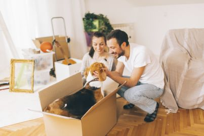 Pet-friendly rental properties are a good investment