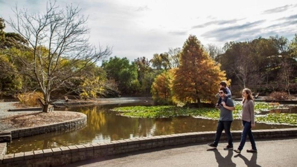Families are drawn to the amenities in Berwick, like Wilson Botanic Park.