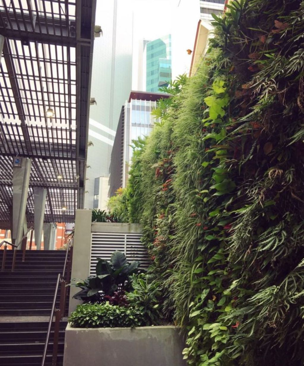 Small 'micro' green areas woven into the CBD such as the green wall in King George Square will become more important as the population continues to grow. Photo: Wendy Hughes