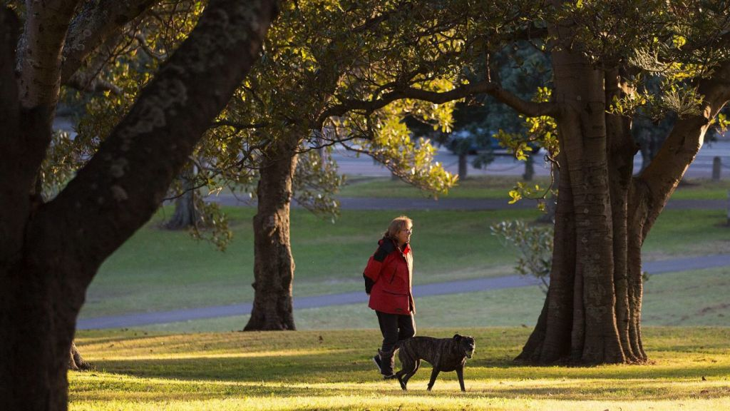 Moore Park is one of many local green spaces residents of Waterloo have easy access to. Photo: Brook Mitchell