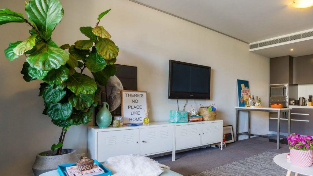 Indoor plants can bring multiple benefits. Photo: Pauline Morrissey