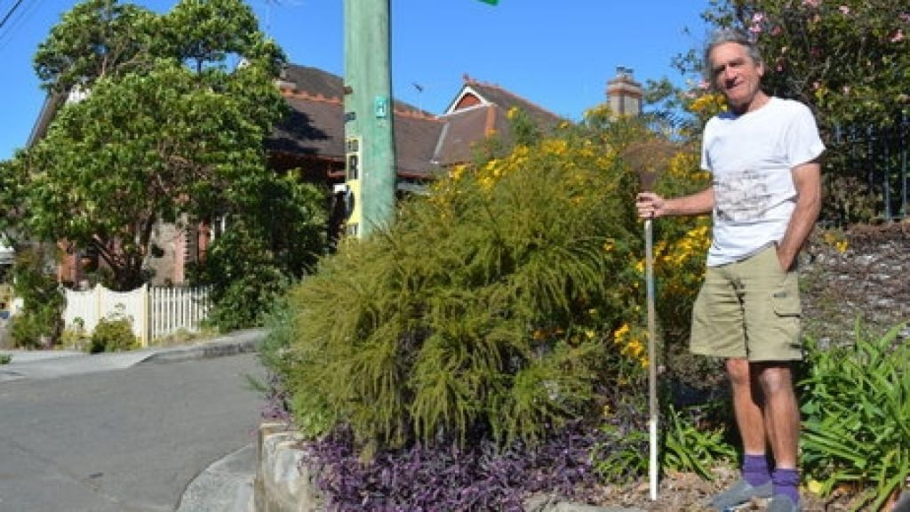 Frank Klaassen was told by Randwick Council that he was required to look after their verge garden: it was a forced verge. Photo: Supplied