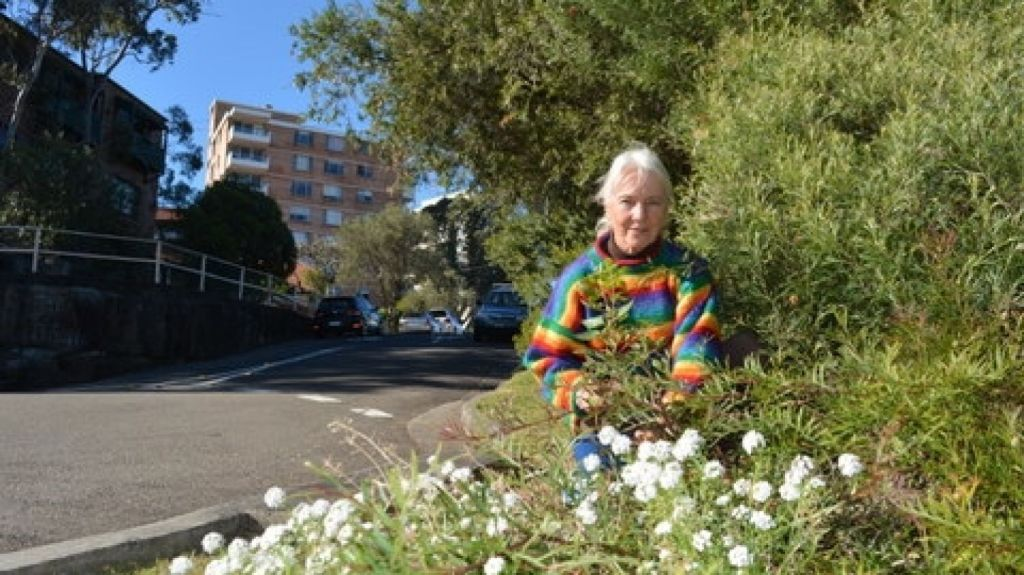 Vera Yee has been creating a verge garden on McKye Street, Waverton since 2000 with North Sydney Council's support. Photo: Supplied