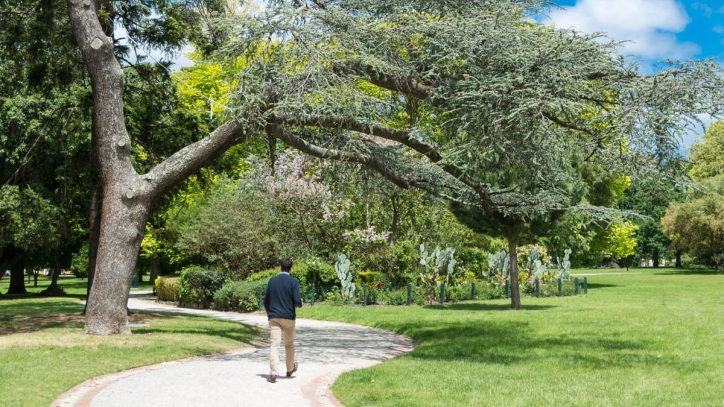 Life in the leafy east: Malvern Public Gardens Photo: Michael Rayner