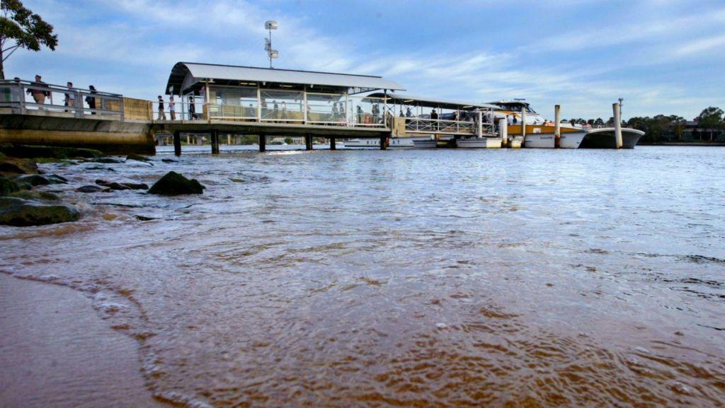 Locals can catch a ferry into the CBD. Photo: Dallas Kilponen
