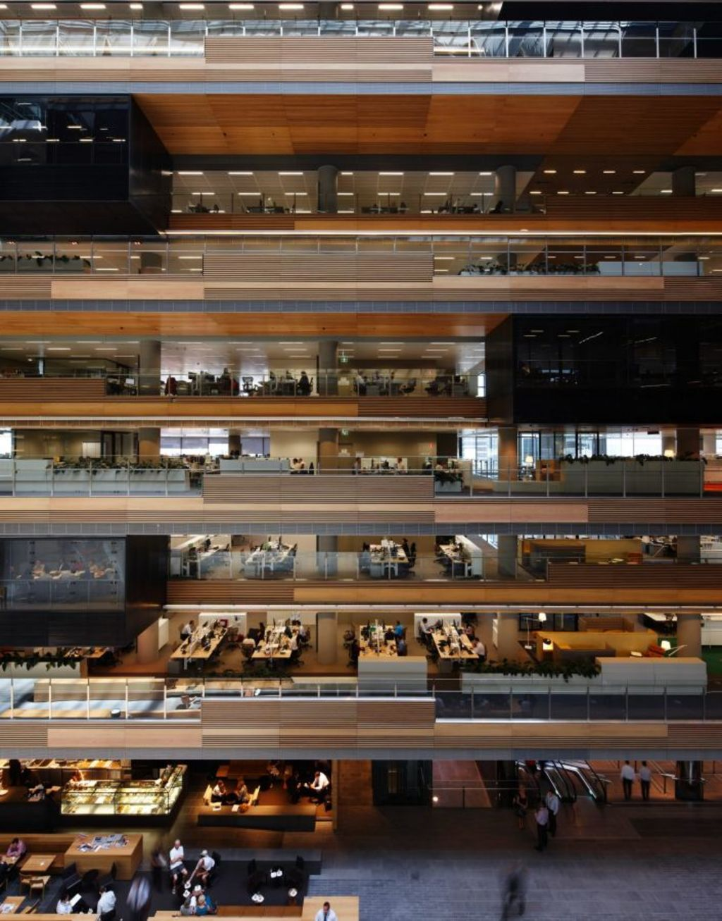 The ANZ Centre in Melbourne designed by Rob Backhouse. Photo: Earl Carter