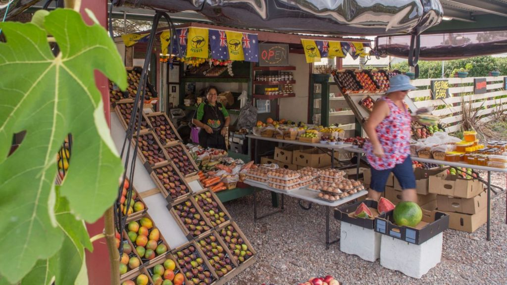 Roadside stalls along the Old Northern Road, Dural. Photo: Quentin Jones