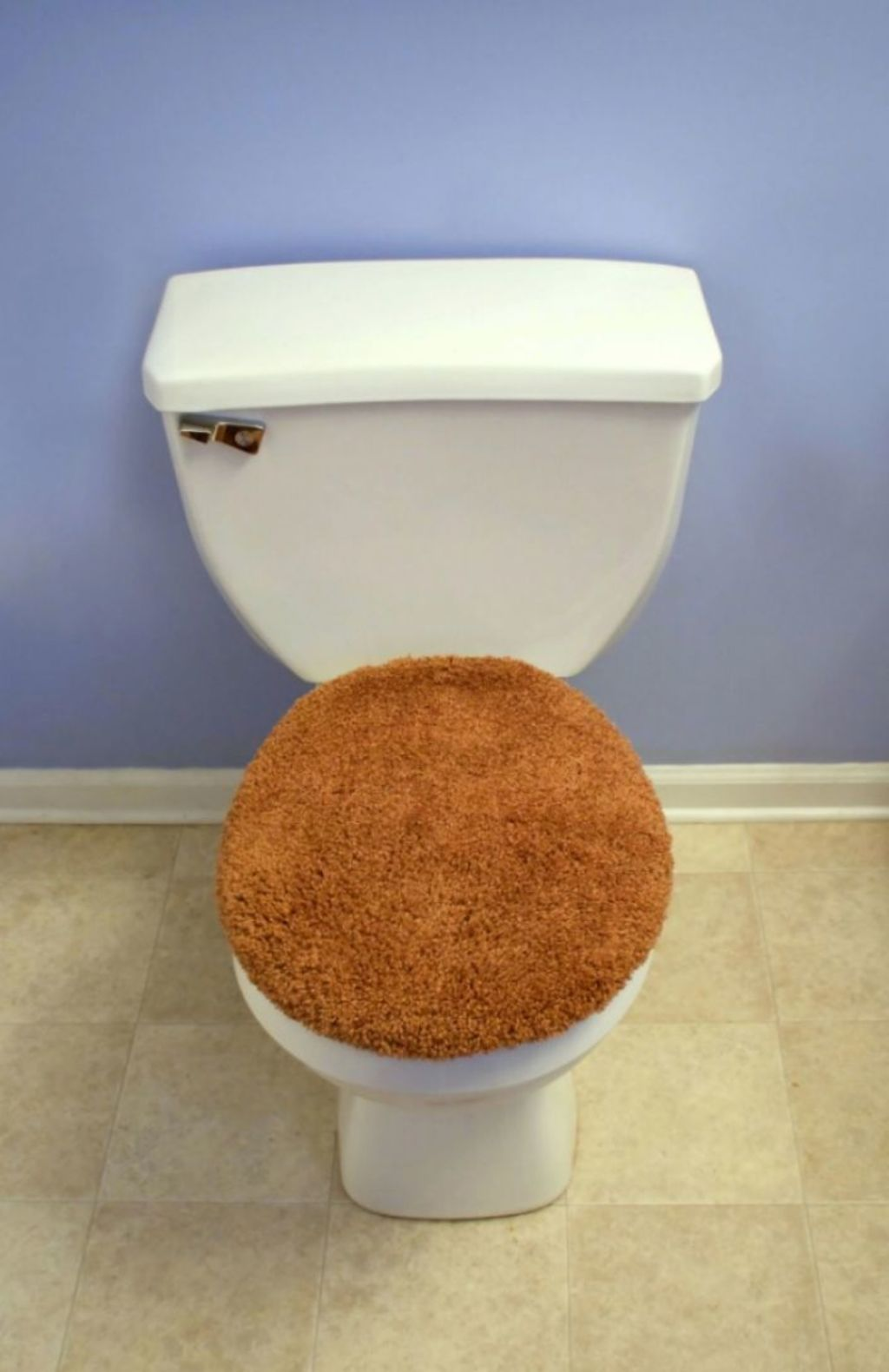 Fluffy toilet seat covers were voted as the worst interior design trend in the past 50 years. Photo: 123RF
