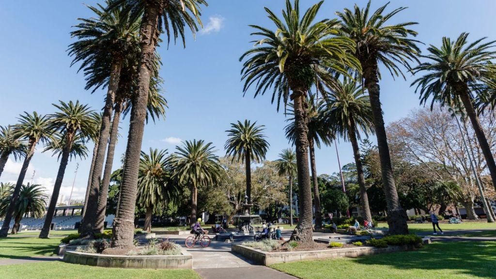 Redfern Park is opposite the site on Elizabeth Street. Photo: Brook Mitchell