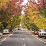 The secret's nearly out about this suburb, once in a neighbour's shadow